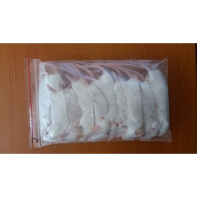 Frozen Mice - Extra-large - 7 Pack