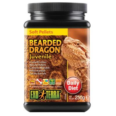 Exo Terra Bearded Dragon Food Juvenile 250gm