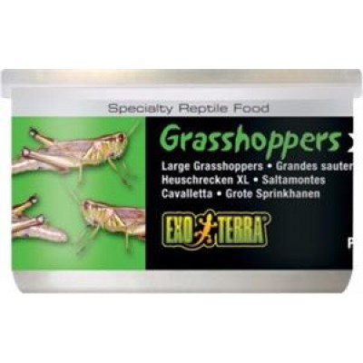 Exo Terra Canned Grasshoppers Large