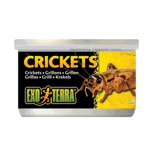 Exo Terra Canned Crickets Small