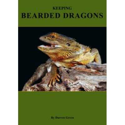 Keeping Bearded Dragons