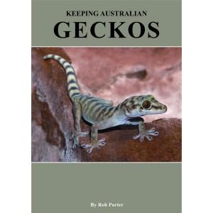 Keeping Australian Geckos