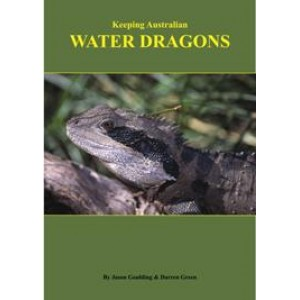 Keeping Australian Water Dragons